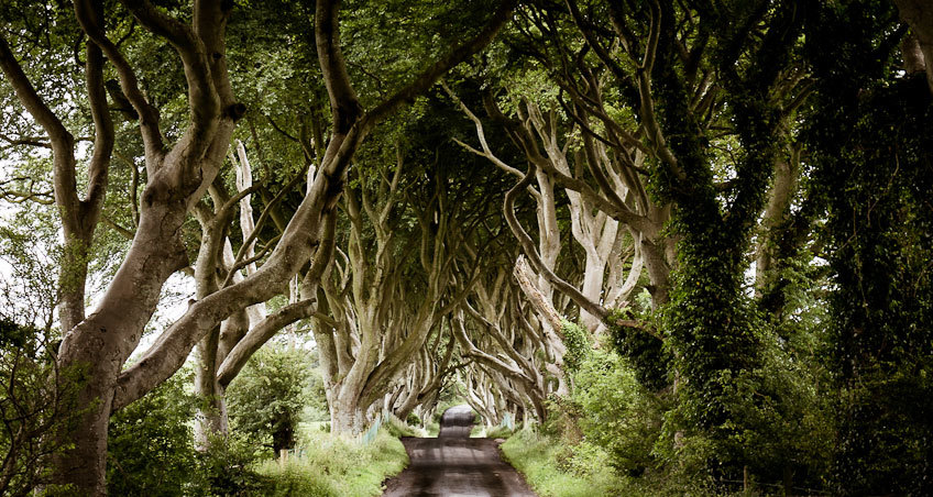 kings-road-game-thrones-northern-ireland
